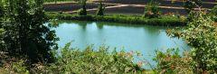 Laghi, fiumi e zone umide