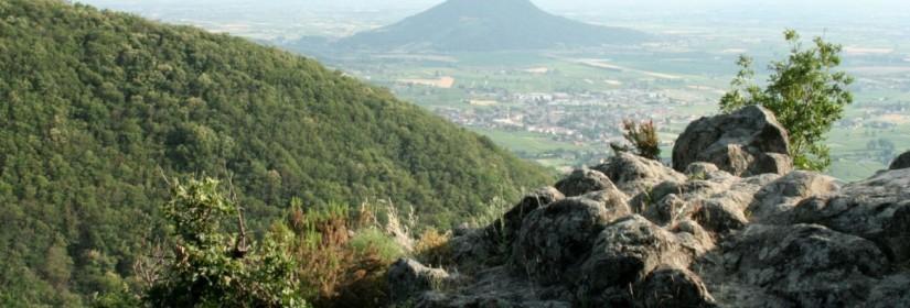 Sentiero del Monte della Madonna n.17