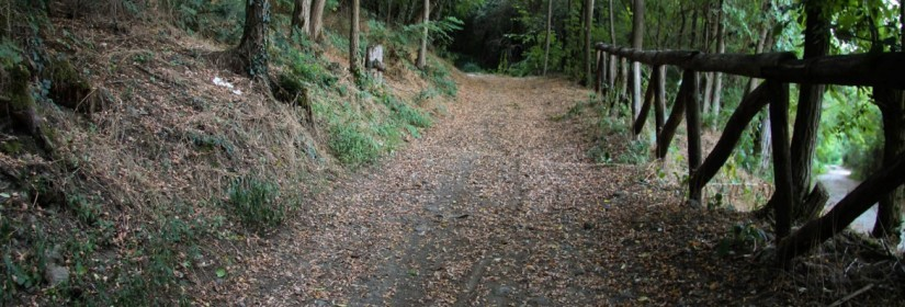 Sentiero del Monte Rosso n.16