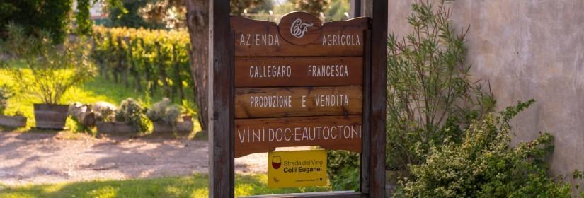 Reassi di Callegaro Francesca