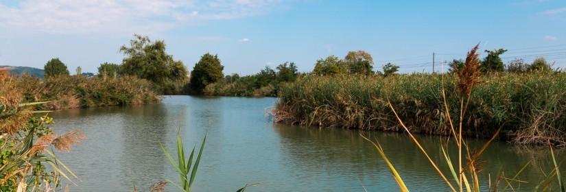 Lago di Lispida