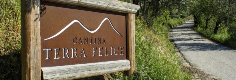 Terra Felice