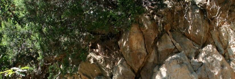 Sentiero del Monte Grande n.14
