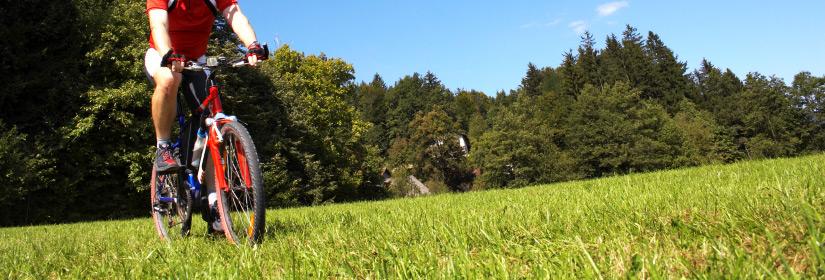 Mountain Bike nei Colli Euganei
